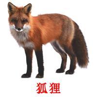 狐狸 picture flashcards