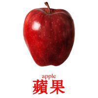 蘋果 picture flashcards