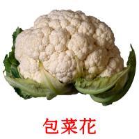 包菜花 picture flashcards