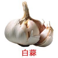 白蒜 picture flashcards