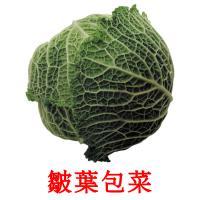 皺葉包菜 picture flashcards