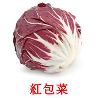 紅包菜 picture flashcards