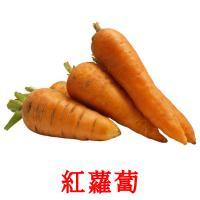 紅蘿蔔 picture flashcards