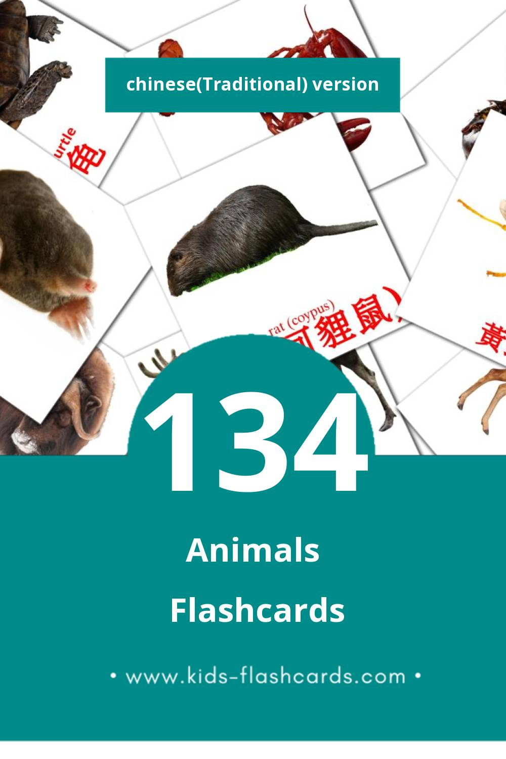 Visual 動物 Flashcards for Toddlers (113 cards in Chinese(Traditional))