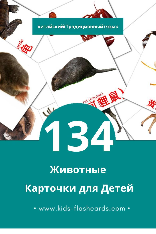 """動物"" - Визуальный Китайский(Традиционный) Словарь для Малышей (113 картинок)"