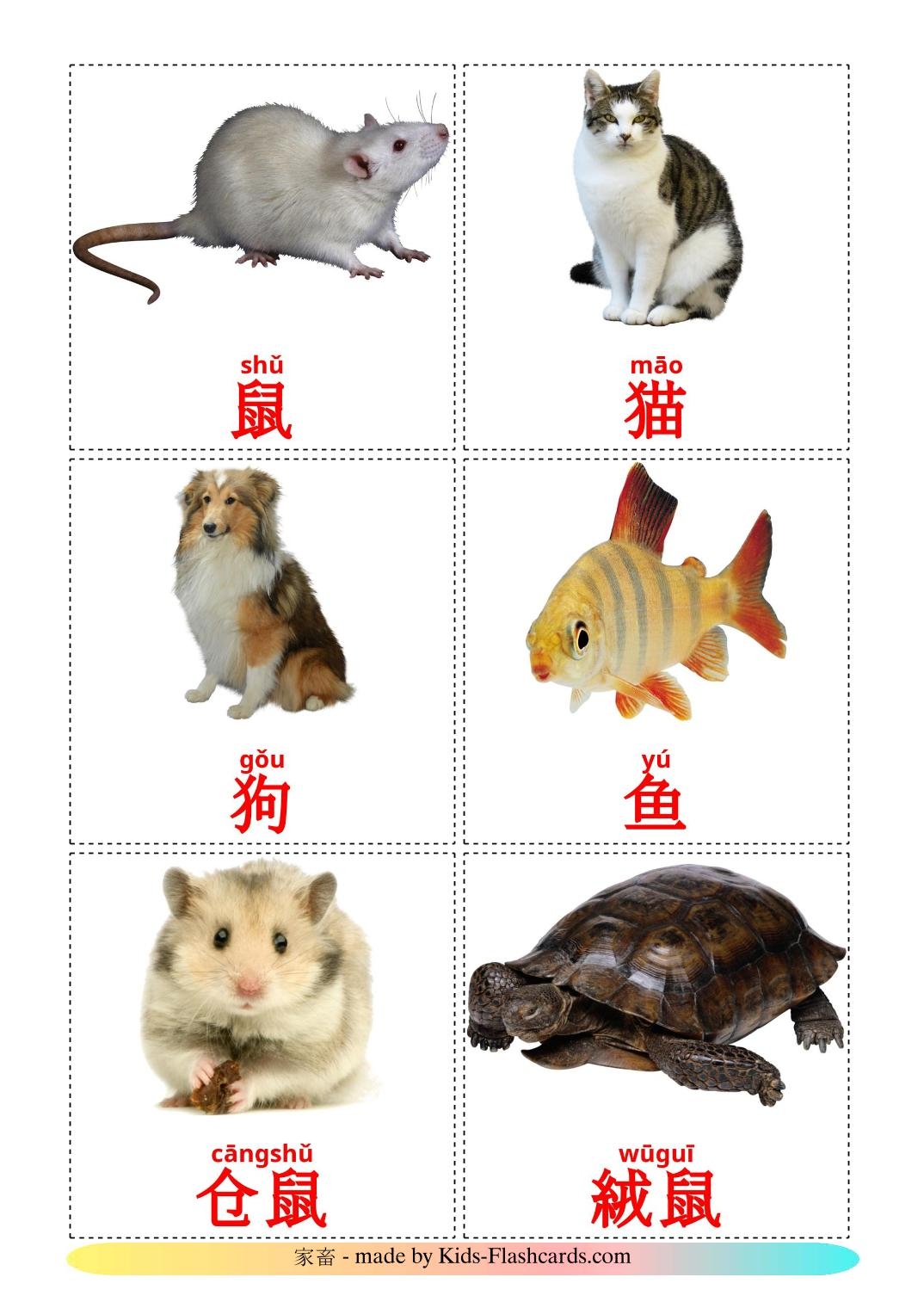 Domestic animals - 10 Free Printable chinese(Simplified) Flashcards
