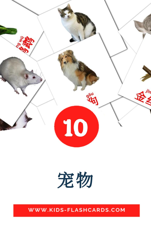 10 家畜 Picture Cards for Kindergarden in chinese(Simplified)
