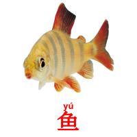 鱼 picture flashcards