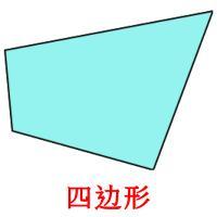 四边形 picture flashcards