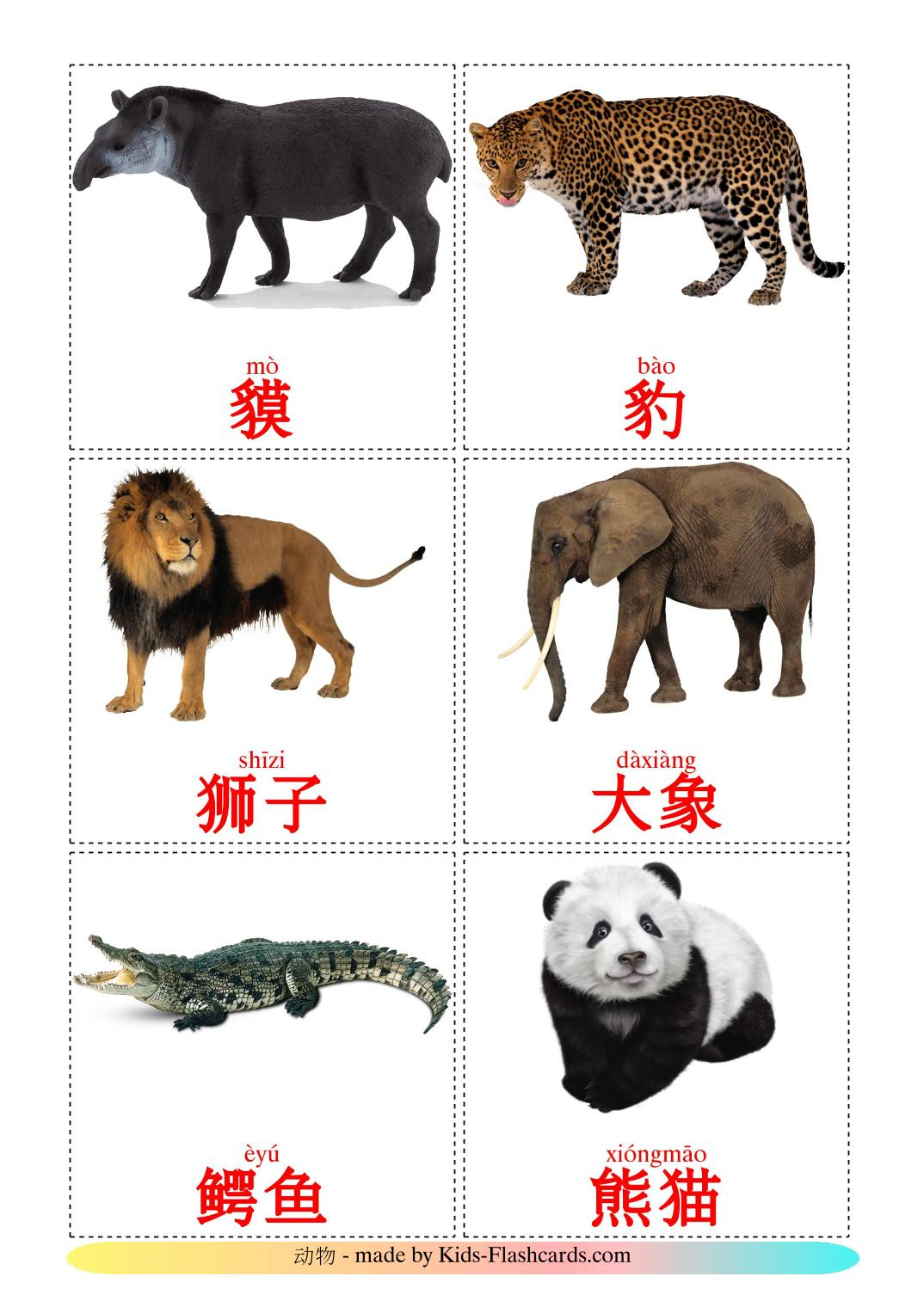 Jungle animals - 21 Free Printable chinese(Simplified) Flashcards