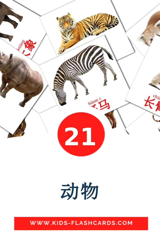21 动物 Picture Cards for Kindergarden in chinese(Simplified)