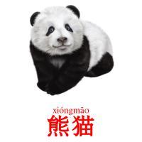 熊猫 picture flashcards