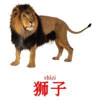 狮子 picture flashcards