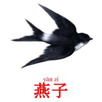 燕子 picture flashcards