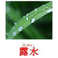 露水 picture flashcards