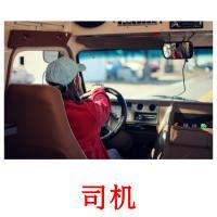 司机 picture flashcards