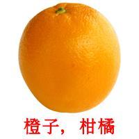 橙子,柑橘 picture flashcards