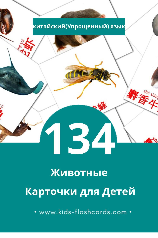 """""""动物"""" - Визуальный Китайский(Упрощенный) Словарь для Малышей (134 картинок)"""