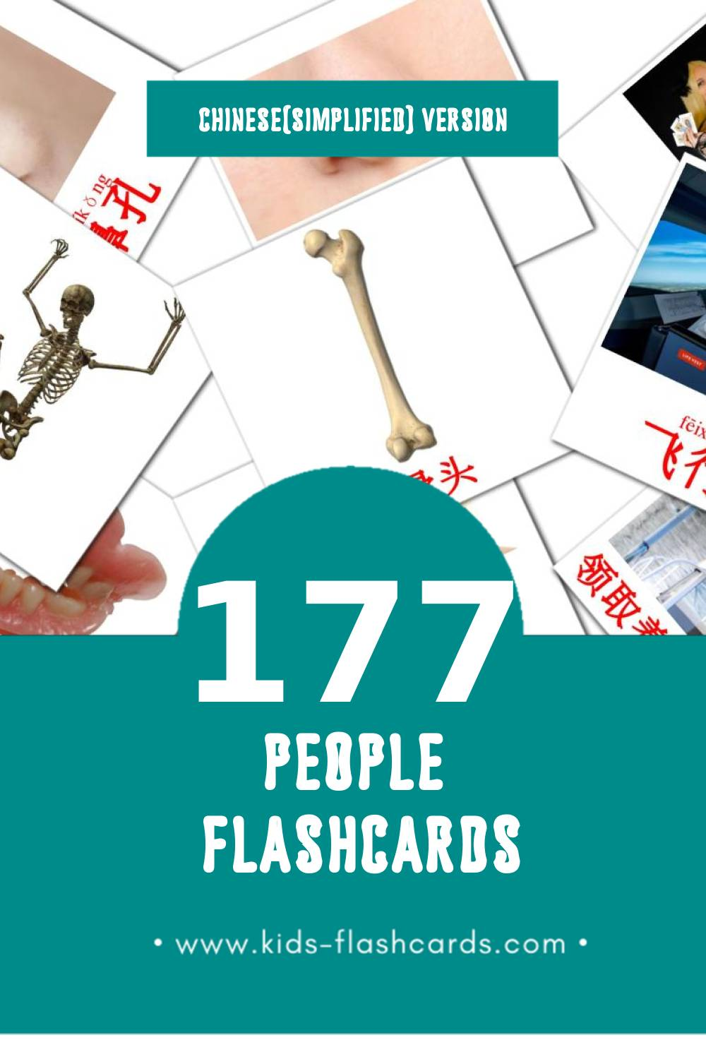 Visual 人 Flashcards for Toddlers (58 cards in Chinese(Simplified))