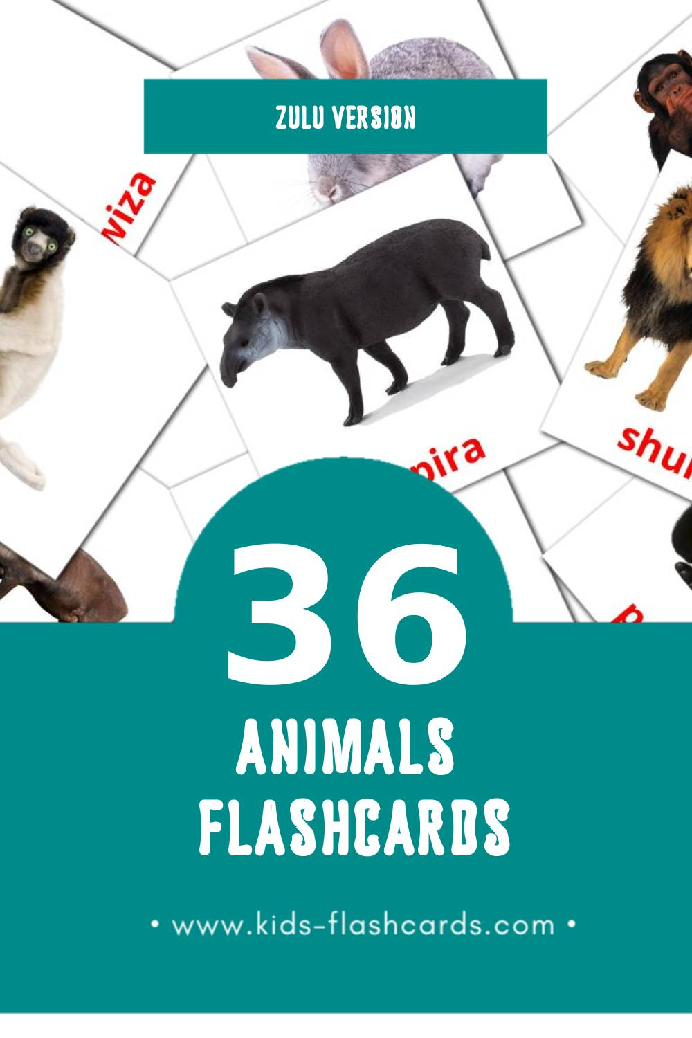 Visual Mhuka Flashcards for Toddlers (36 cards in Zulu)